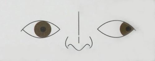 プリズムメガネ画像